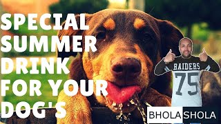Pet Care - Special Summer Drink For Your Dog's - Bhola Shola