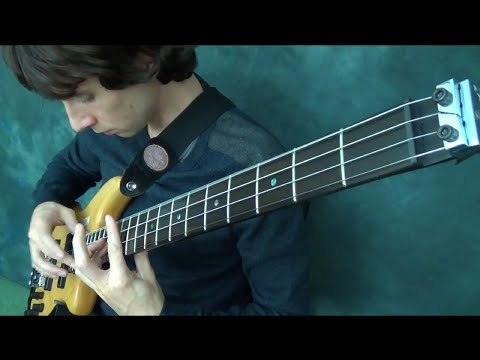 ZANDER ZON - Bass and Electric Cello Duet | BassTheWorld.com
