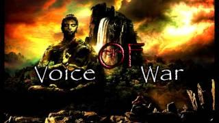 D.B.S - Voice Of War (Orginal Mix)