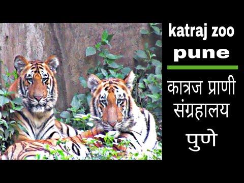 Rajiv Gandhi zoo & katraj snake park, pune