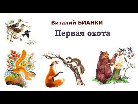 """В.Бианки """"Первая охота"""" - Рассказы и сказки Бианки - Слушать"""