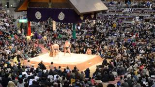 Hakuho Sho in action at Fukuoka Grand Sumo Tournament
