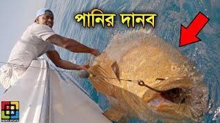 পানির থেকে ধরা বিশ্বের সবচেয়ে বড় 10 টি শিকার | Top 10 Biggest Catches Of All Time | Taza News