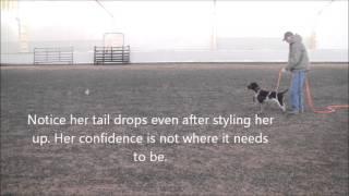 Hedee training 3 16 14 2