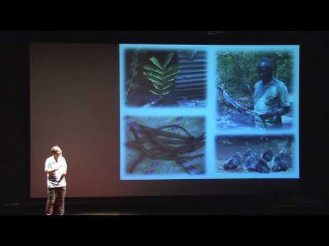 TEDxOsaka - Michael Huffman - Animal self-medication
