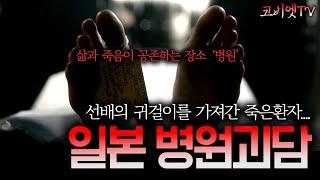 일본 병원근무 중 경험한 무서운썰 무서운이야기 실화  보이는 공포라디오 코비엣TV  자막有