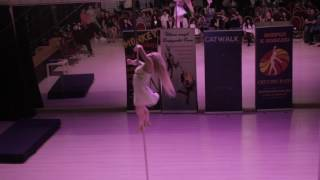 Ольга Волкова-Тен- Catwalk Dance Fest VIIl [pole dance, aerial] 16.04.17.
