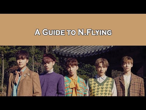 (Un)helpful Guide To N.Flying