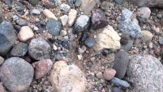 Finding the Rarest of Agates, Skip An Atom LSA