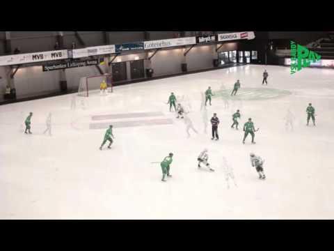 Svenska cupen 2013