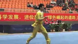 2010年全国武术套路锦标赛(传统)M07 001 男子查拳 樊腾飞