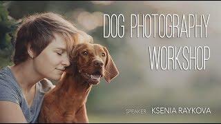 Фотосъемка собак - Мастер-класс Ксении Райковой