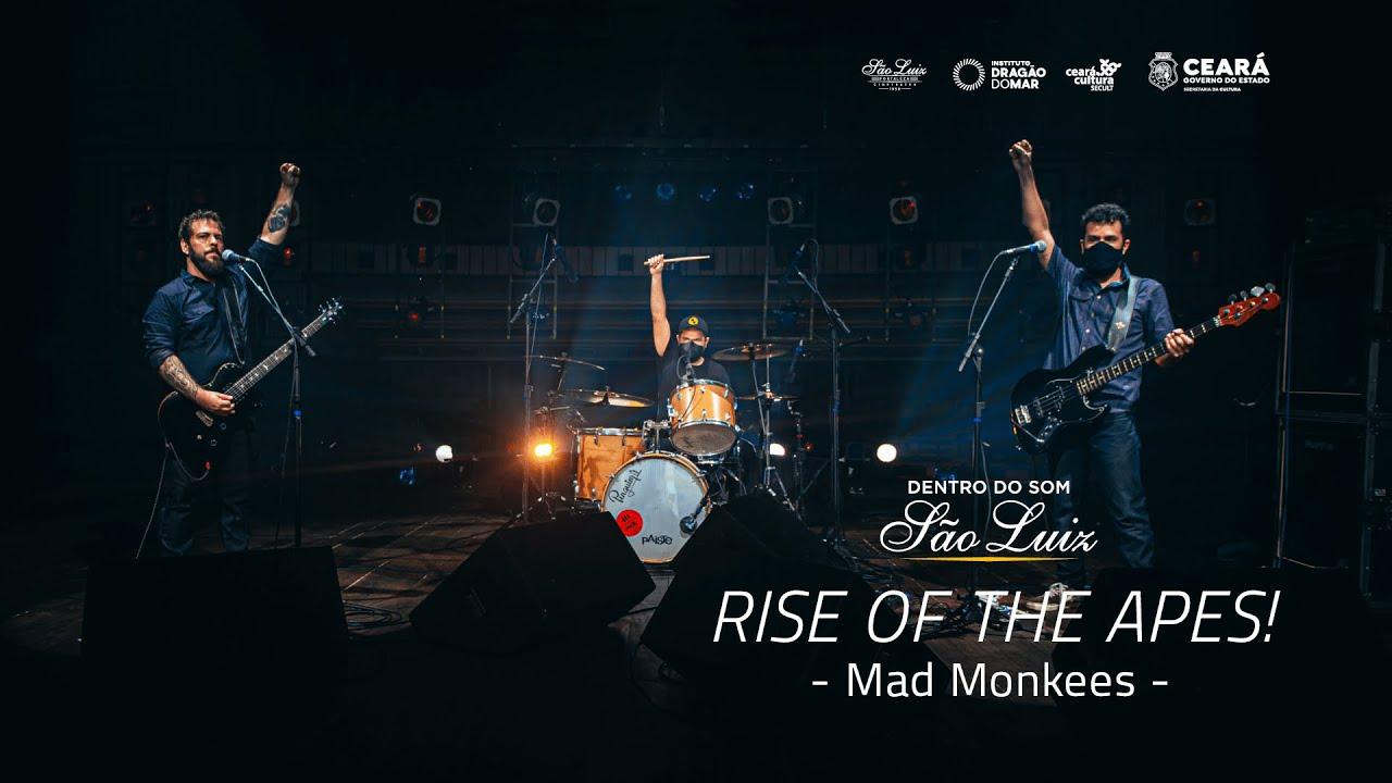 """[Dentro do Som] Show """"Rise of the Apes!"""" da Mad Monkees"""