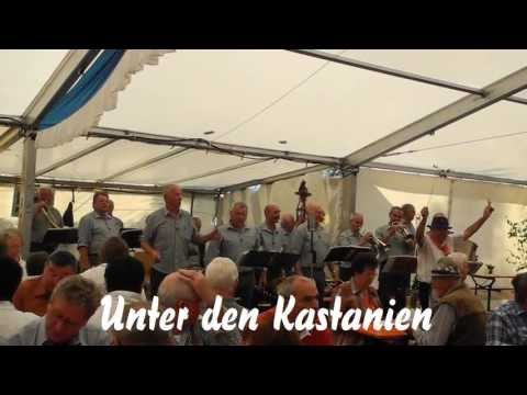 Bergmusikanten Waldfenster - Schondra 2013  (1)