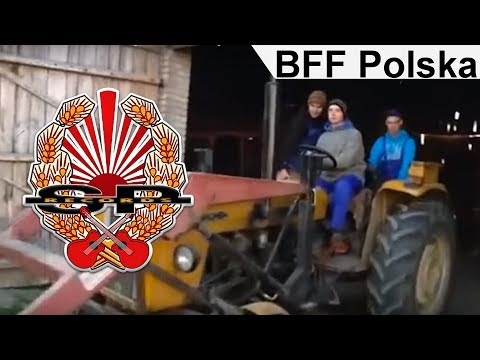 BRACIA FIGO FAGOT - Polska [OFFICIAL VIDEO]