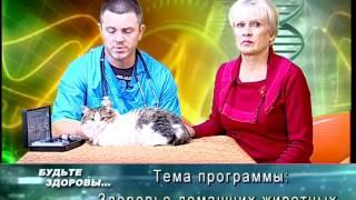 Будьте здоровы. Врач-ветеринар Владимир Лавров. Лечение домашних животных