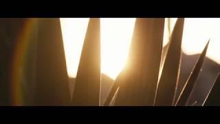 BMPCC 4K Early Morning Test | 4k | Blackmagic Pocket Cinema Camera 4k