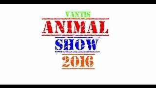 Wystawy zwierząt Animal Show Kraków 16-17.04.2016 #1 terrarystyka