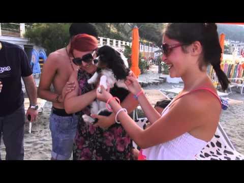 Spiaggia per cani Capo Mele