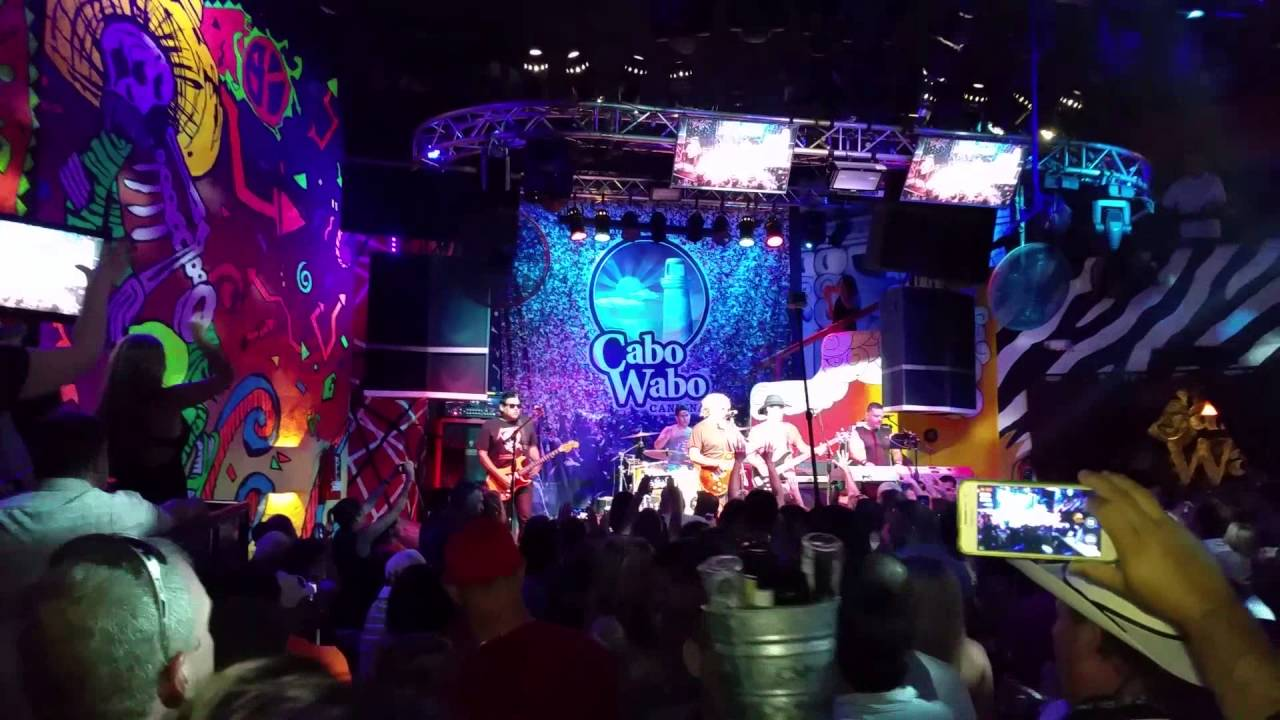 Image result for cabo wabo cabo
