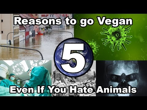 Don't care about animals? 5 reasons you should still go vegan