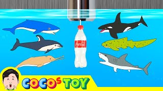 [EN] Sharks live under the wash basin 5, kids animals animation, dinosaurs adventureㅣCoCosToy