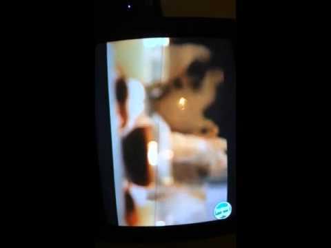 Alacranes Musical Besos De Fuego ( Official Video )