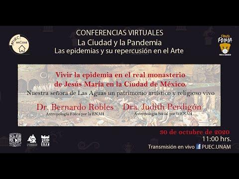 Vivir la epidemia en el real monasterio de Jesús María en la Ciudad de México [592]