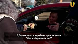 Новости запада Башкирии (ПДД, боевые искусства, BashMuit, в гостях у Чехова)