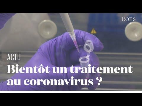 Un Labo Français Espère Trouver Au Plus Vite Un Traitement Contre Le Coronavirus