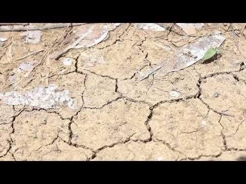 Ano ang El Niño?