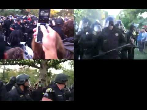 UC Davis Pepper Spray Incident, Four Perspectives