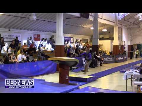 International Gymnastics Challenge Vault, Nov 16 2013