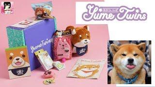 """""""Shiba và những người bạn"""" Mở hộp Yume Twins NHẬT BẢN/ YumeTwins Unboxing March 2018"""