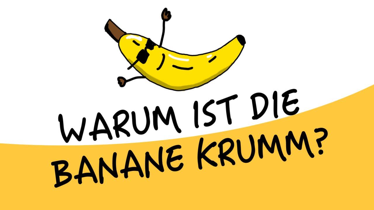 warum ist die banane krumm papawarum youtube. Black Bedroom Furniture Sets. Home Design Ideas