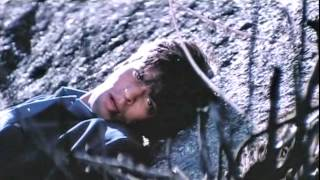 Помоги мне.../ Shah Rukh Khan