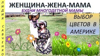ЦВЕТЫ для сада клумбы огорода в Америке Женщина-Жена-Мама Канал Лидии Савченко