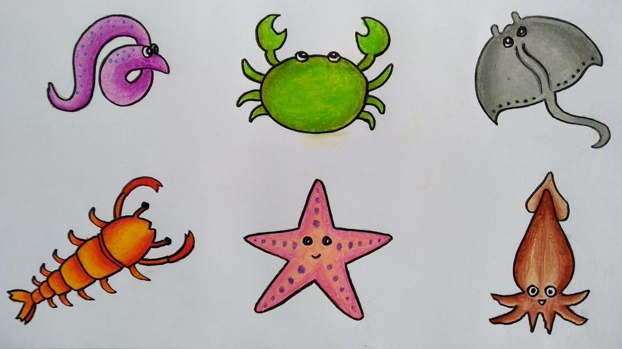 Menggambar Macam Macam Hewan Laut Cara Menggambar Dan Mewarnai Hewan Laut Youtube