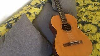 Gatto Panceri - La canzone del sole - ( GATTIZZAZIONE )