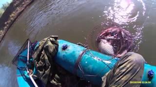 рыбалка от первого лица Пироговка Ахтуба поплавочная удочка(Астрахань, Пироговка, сентябрь, 2015, рыбалка, поплавочная удочка., 2016-03-15T17:23:59.000Z)