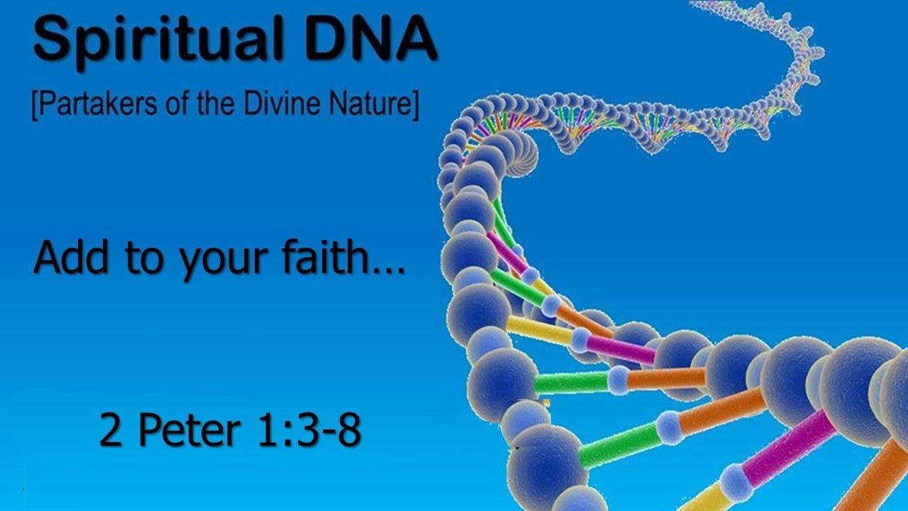 Spiritual DNA Series - Endurance