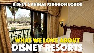 Disney's Animal Kingdom Lodge | What We Love About Disney Resorts
