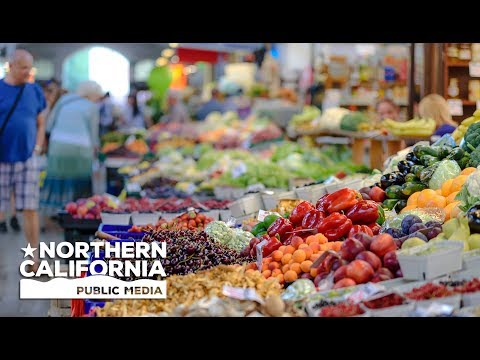 Bay Area Bountiful: Farmers Markets