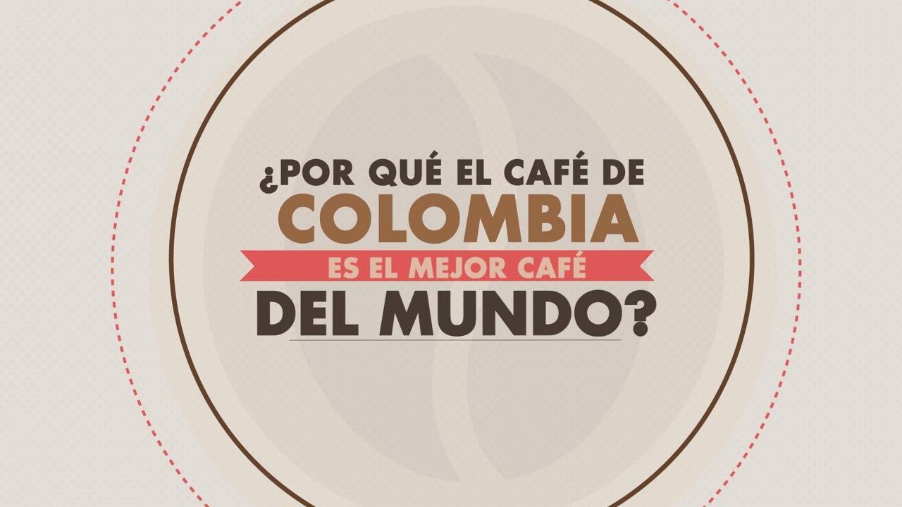 Por qu el caf de colombia es el mejor caf del mundo for El mundo del mueble sillones