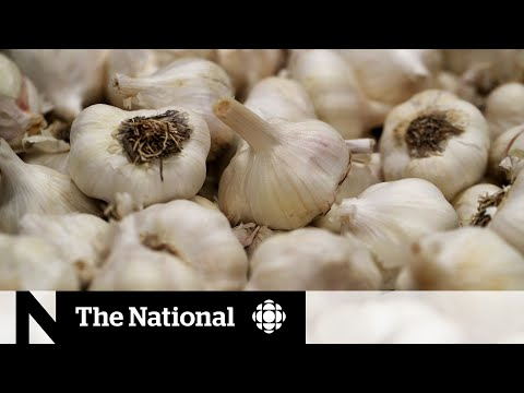 Busting garlic cures and other false coronavirus claims