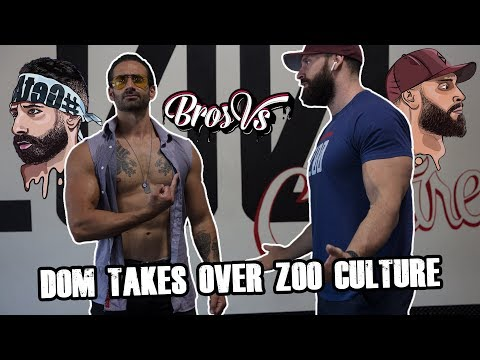 Dom Mazzetti Takes Over Bradley Martyn's Gym | Bros Vs.