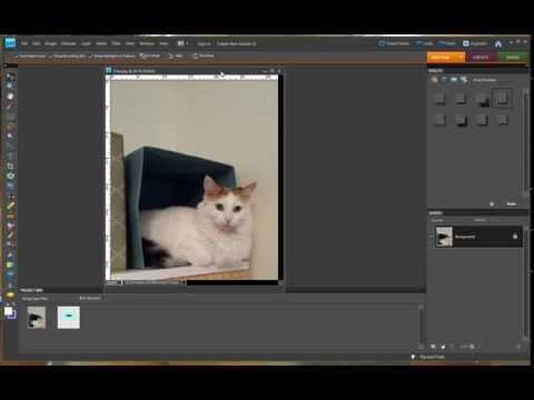 Photoshop Elements 8 - Adding A Drop Shadow