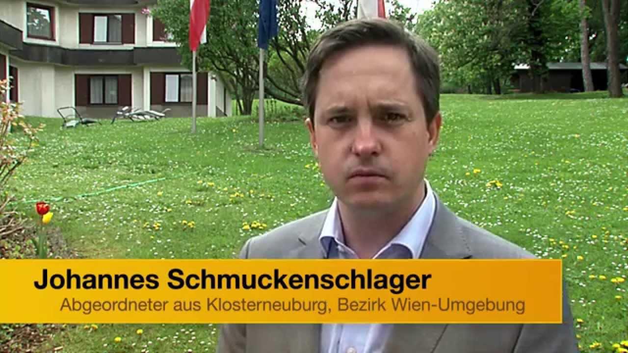 Europawahl 2014 Johannes Schmuckenschlager über Lukas Mandl Youtube