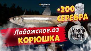 Русская рыбалка 4 Фарм серебра Ладоское оз корюшка рр4 ладога тров корюшка