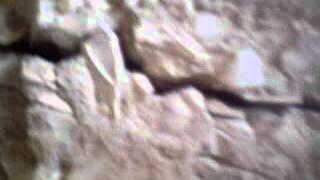 что делать если фундамент дал трещину(нестарый дом и как поехал фундамент., 2014-07-23T18:53:46.000Z)